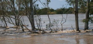 The raging Burnett river during the 2013 floods.