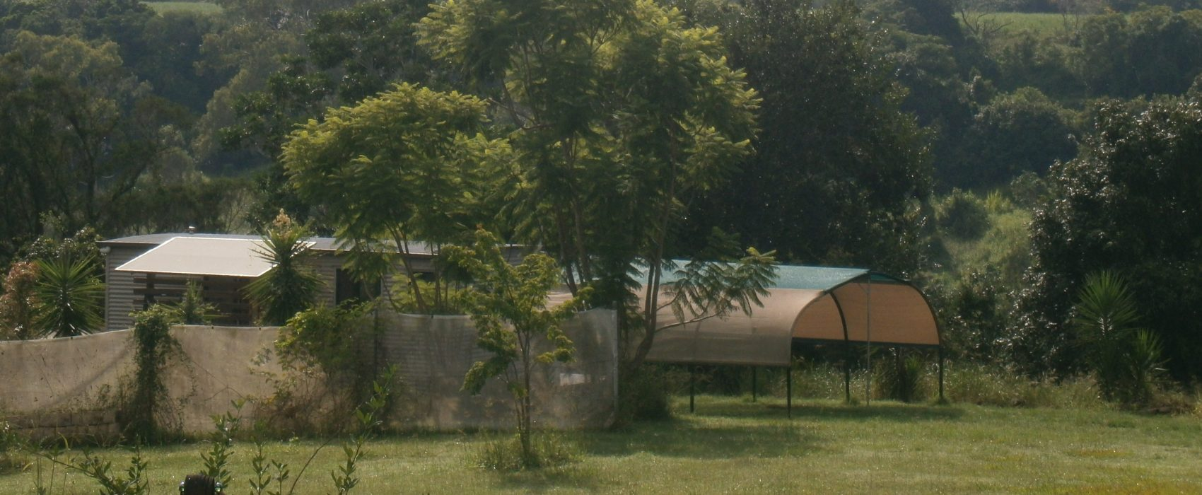 shady carport and cabin