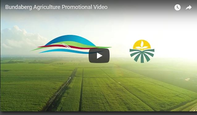 Promotional video delivered by Bundaberg Agriculture